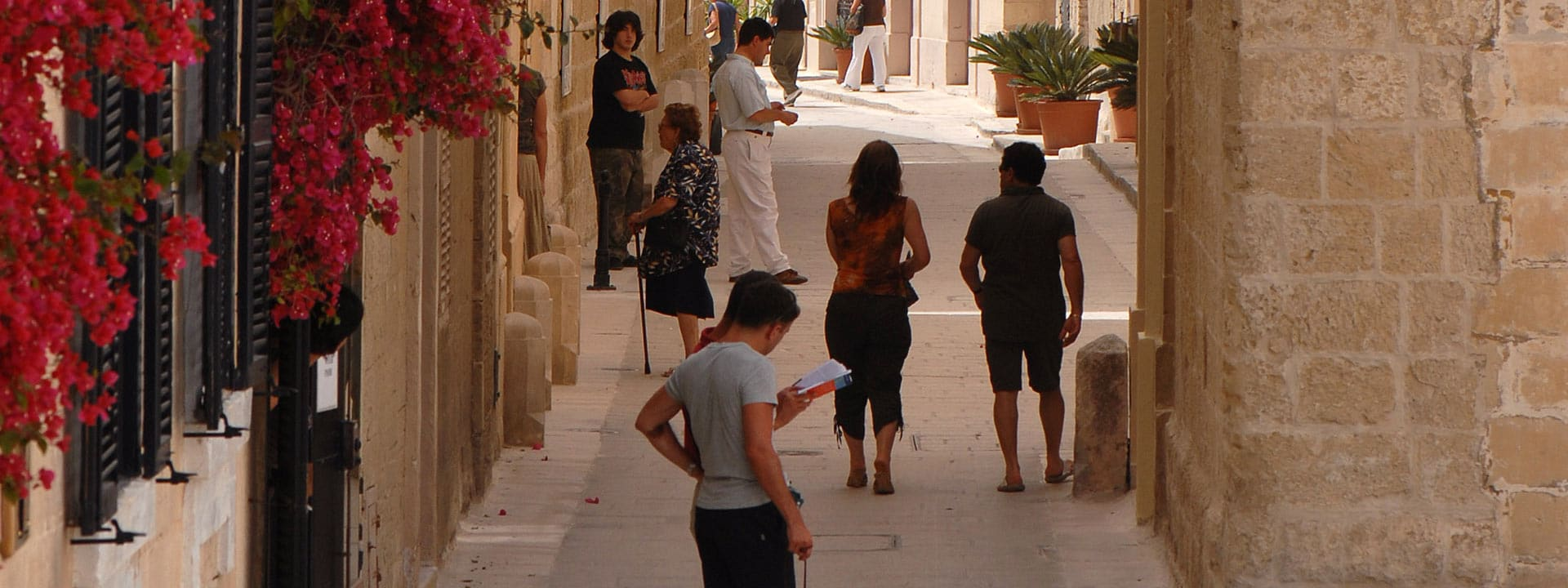 MSIS Zubucherkonzept Malta